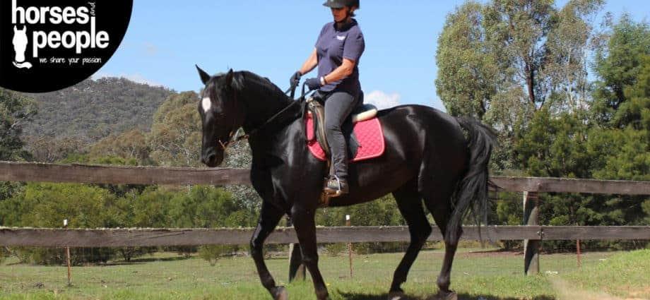 Kate Fenner riding black horse. SMART goal setting