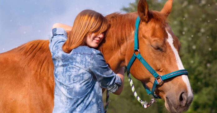 Woman hugging chestnut horse. The power of change