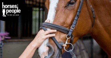 A noseband that allows two adult fingers to fit between the nasal bones and the strap. ISES Position Statement on use of Nosebands, End of Tight Nosebands for Dutch Horses. Noseband use
