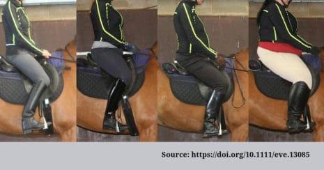 Comparing rider weight. Horse-rider weight.