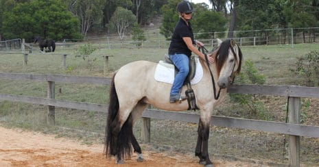 Kate Fenner riding a buckskin horse. Train your own horse.