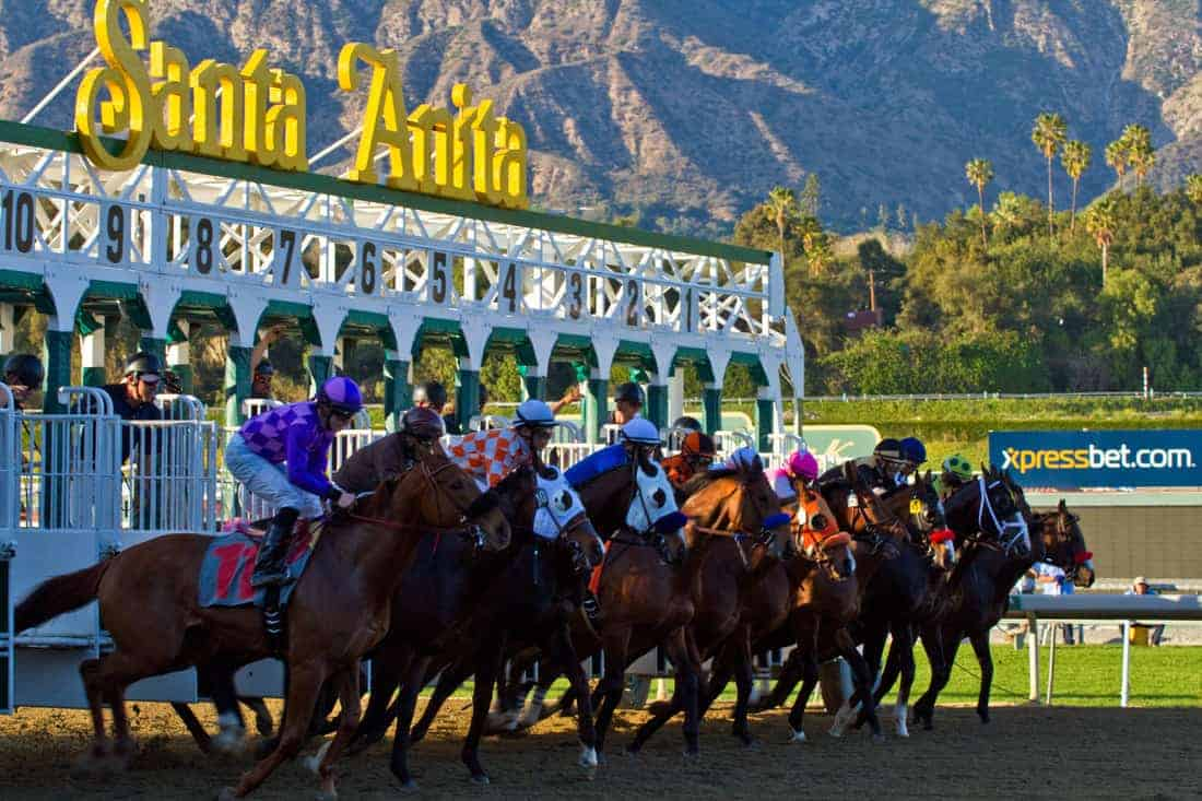 The starting gates at Santa Anita Park. California's horseracing welfare reform. Santa Anita Park reforms.