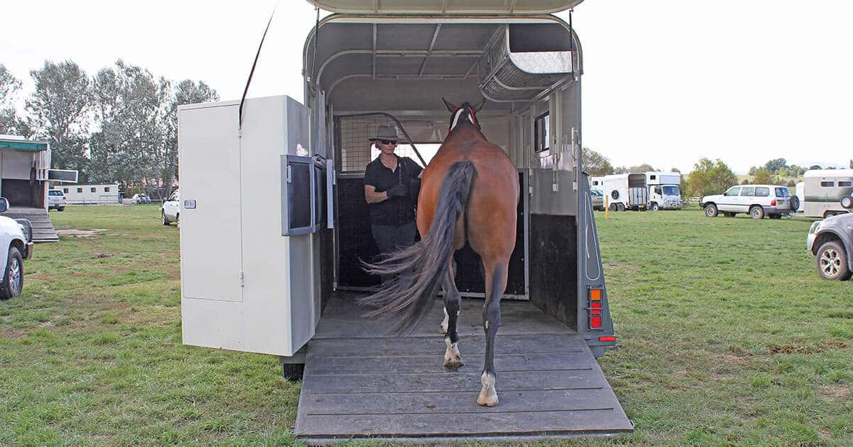 Training your horse to load - easily! Loading a horse onto a horse float easily. Stress free.