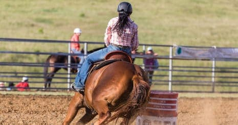 Barrel racer wearing a helmet and riding her horse around barrel. Recognising concussion.