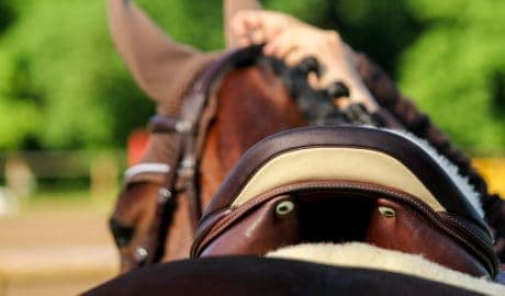 saddle fit