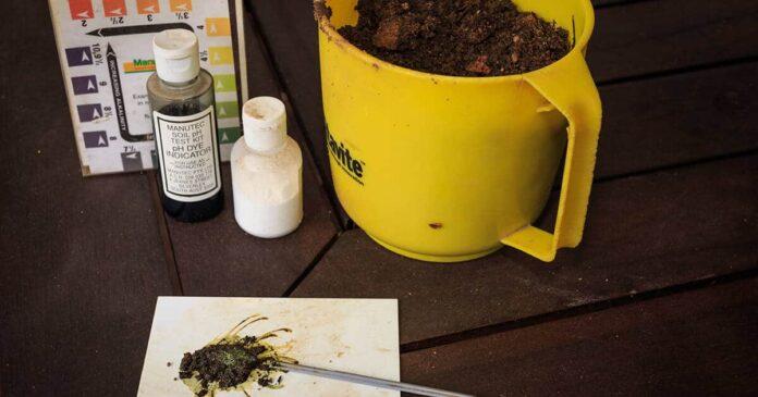 DIY Soil Tests
