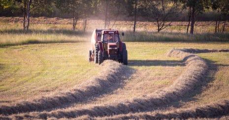 Making hay, baling round bales
