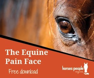 The Equine Pain Face
