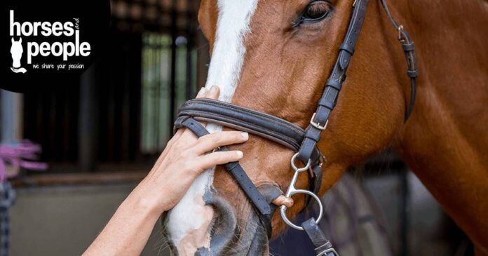 Loosen up the noseband. Vets support responsible noseband use.
