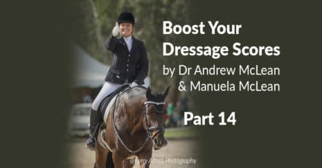 Dressage with learning theory. Flying changes