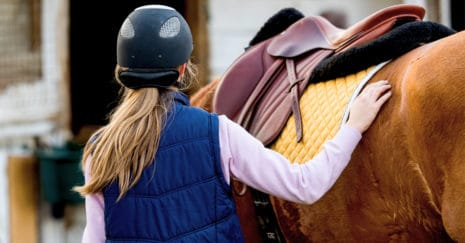 horse-human interactions. Safety in the horse industry