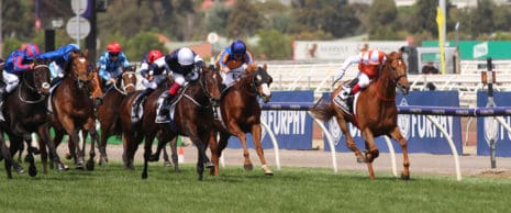 The 2019 Melbourne Cup finish was hotly contested and has raised more questions about the use of the whip in racing.