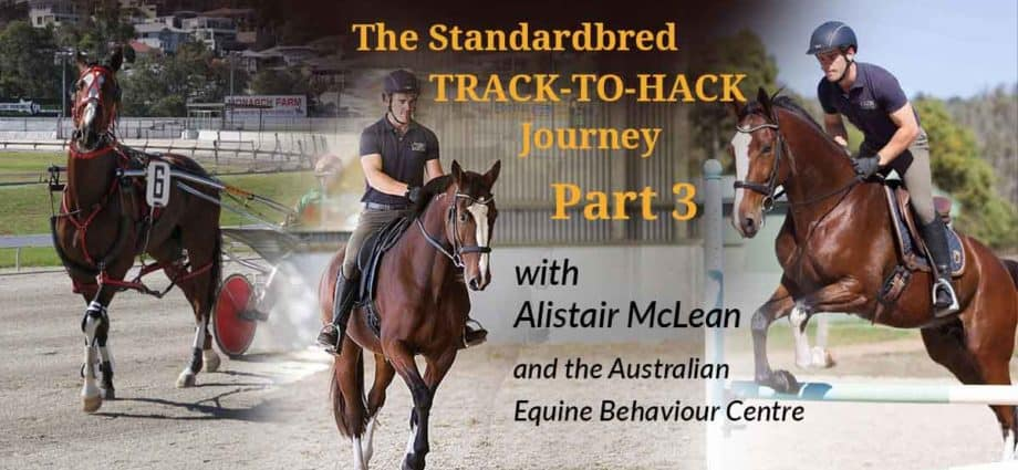 Alistair McLean of the Australian Equine Behaviour Centre with the retired Standardbred Ideal Guy, rehoming retraining the standardbred racehorse. Backing your horse