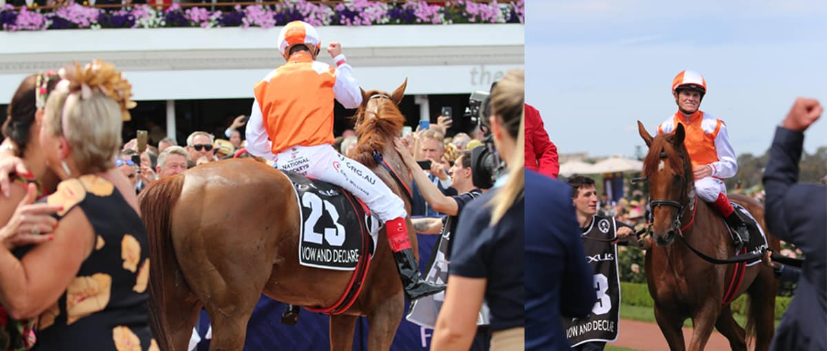 The 2019 winner of the Melbourne Cup, Vow And Declare shows evidence of whip marks.
