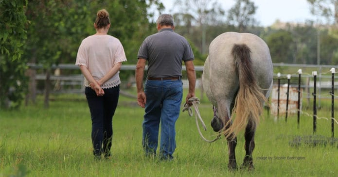 A man and a woman leading a horse walk away giving a feeling of relaxed mindfulness