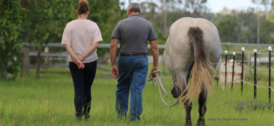 A man and a woman leading a horse walk away giving a feeling of relaxed mindfulness. horse riding benefits. Benefits of being around horses.