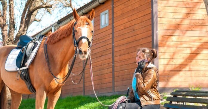 Chestnut horse standing with a woman on her mobile phone. humans should control their emotions around horses