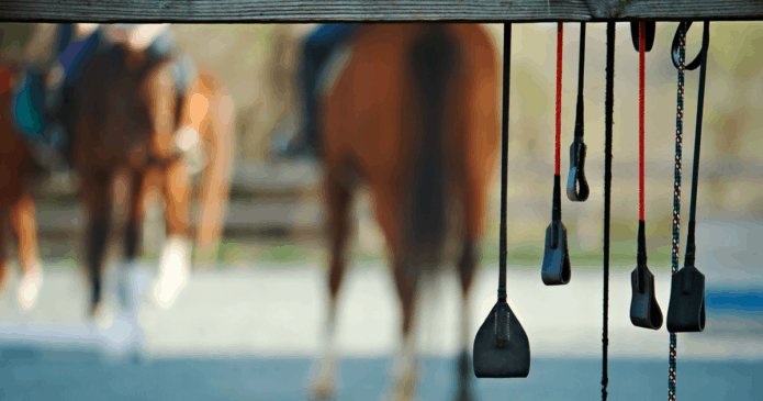 Whips hanging from a fence with horses in the background.