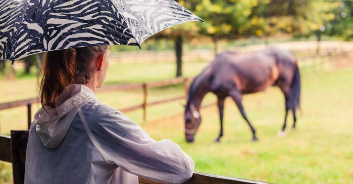 A woman with an umbrella watches her horse grazing in the rain. Horse pastures drought recovery