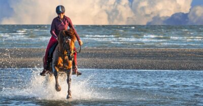 Woman riding horse on the beach. we all start the year setting new goals