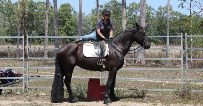 Kate Fenner mounting Friesian horse for the first time. Safe mounting.