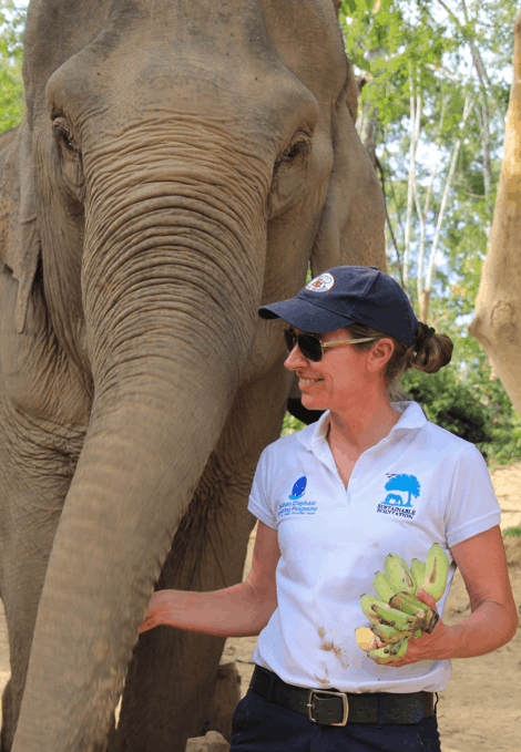 Dr Portland Jones, Diploma of Equitation Science, is a volunteer for the Human Elephant Learning Programs (HELP)