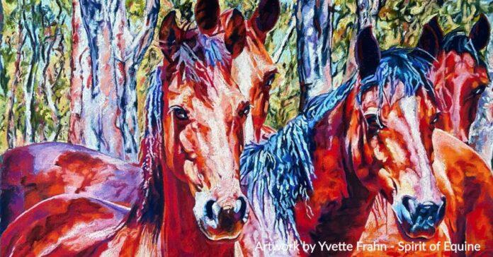 Original artwork of Barmah Brumbies by Yvette Frahn, Spirit of Equine