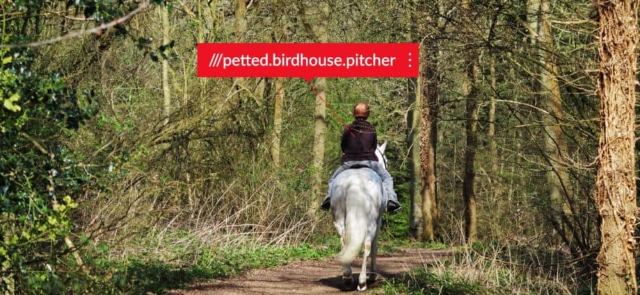 what3words app makes horse riding safer
