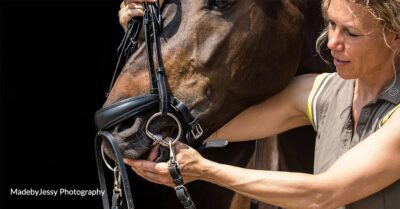 Bit fitting consultants offer a bit more choice and a holistic and welfare-centered approach to bit and bridle fitting. Bit Fit