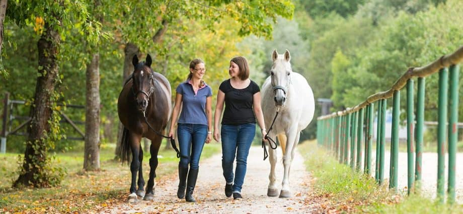 Two friends leading their horses and enjoying each other's company. Helping each other with whatever struggle they are facing