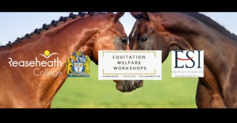 Equitation Science Workshops an online event August 2020