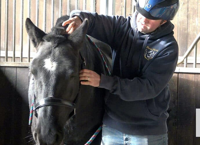 Dr James Cooling of Horse Bit Fit assessing a client