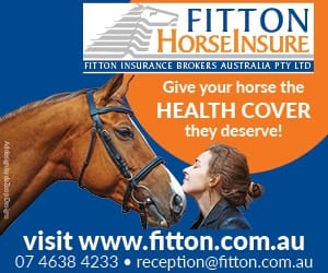 Fitton HorseInsure the specialists in insurance for equestrians