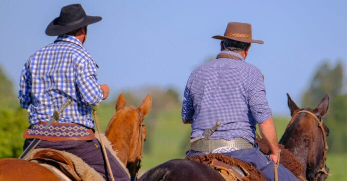 Recognising fatigue in ranch horses