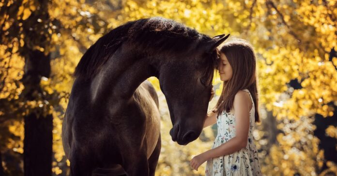 Humans create emotional bonds with horses that fit scientific definitions of attachment theory. And they can do it really quickly!