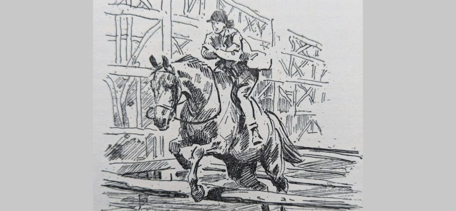An illustration from The Horsemasters by Don Stanford