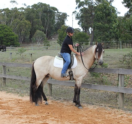 A horse that is in self-carriage at the mounting block will stand there until asked to move off.
