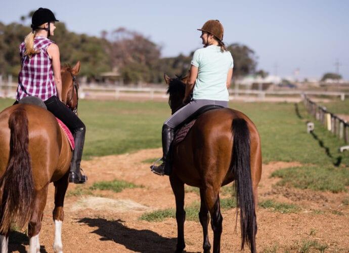 Two friends on horseback