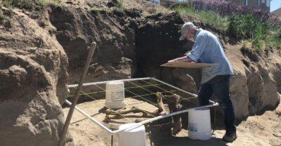 Archeological dig of the Lehi horse in Utah