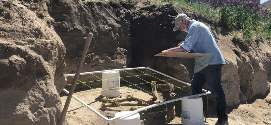 Archeological dig of the Lehi horse in Utah