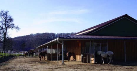 The HIT Active Stable system is a fully automated system that allows horses to be kept in groups whilst at the same time allowing for individual feeding regimes