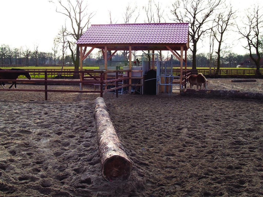 The design and layout of active stables really does encourage movement. Image courtesy HIT Active Stable.