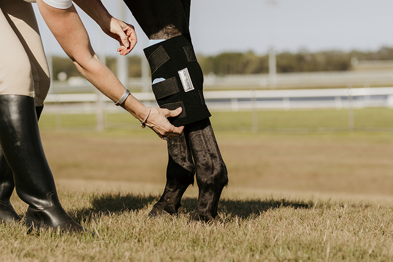 Ice N Easy Equine, providing cold therapy solutions specifically for the equine industry.