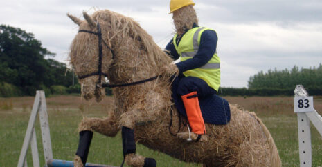 A straw man on a horse