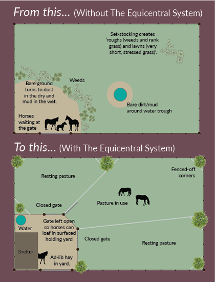 The Equicentral System for natural and sustainable horse management