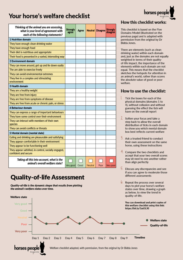 A welfare checklist you can use with horses.